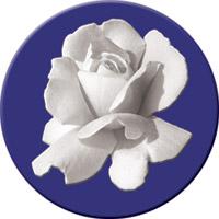 Neue Solidarität 21/2012:Tragen Sie das Symbol des